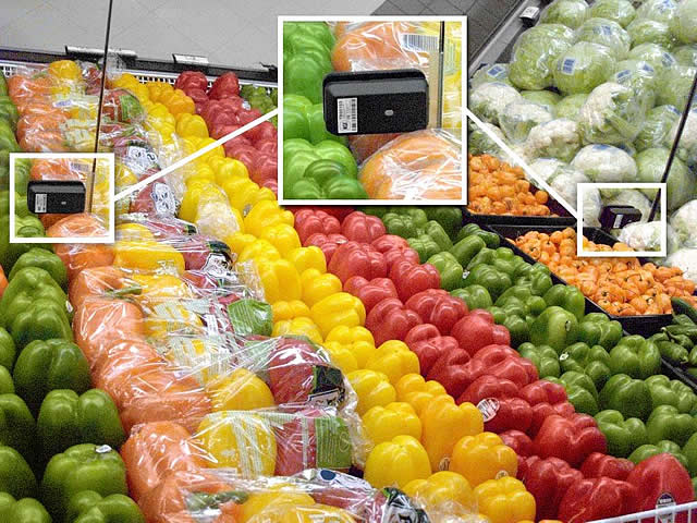 Colorful Produce Sensors640x480